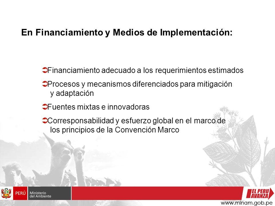 En Financiamiento y Medios de Implementación: Financiamiento adecuado a los requerimientos estimados Procesos y mecanismos diferenciados para mitigación y adaptación Fuentes mixtas e innovadoras Corresponsabilidad y esfuerzo global en el marco de los principios de la Convención Marco