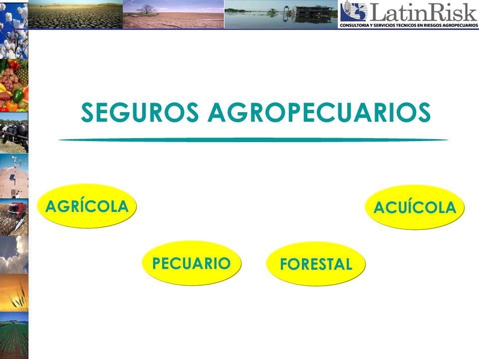 FORESTAL AGRÍCOLA ACUÍCOLA PECUARIO SEGUROS AGROPECUARIOS