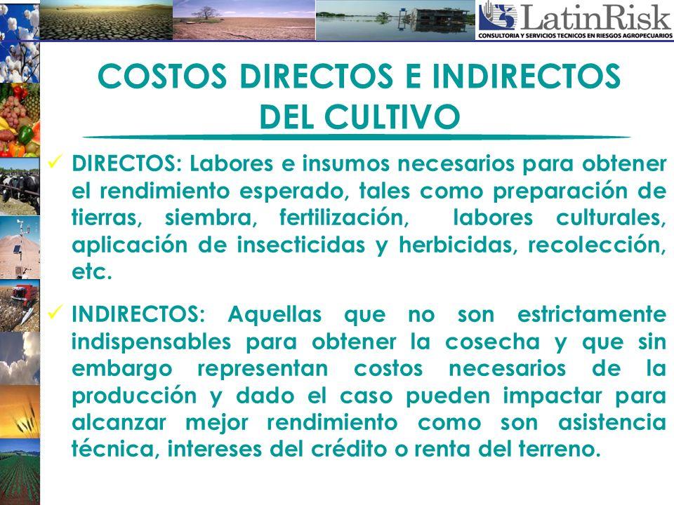 COSTOS DIRECTOS E INDIRECTOS DEL CULTIVO DIRECTOS: Labores e insumos necesarios para obtener el rendimiento esperado, tales como preparación de tierra