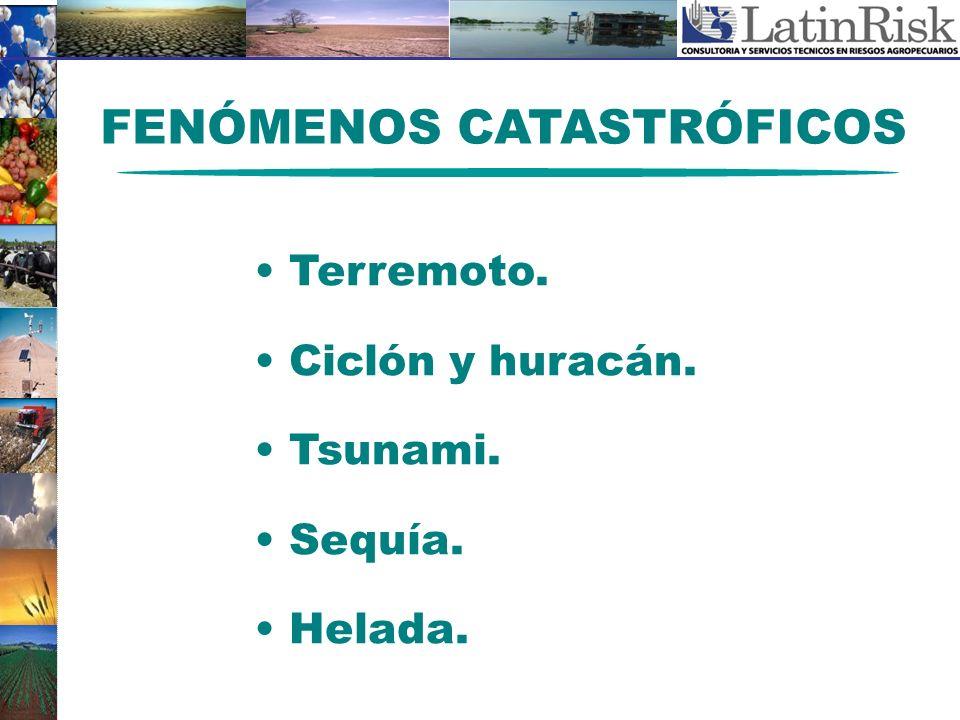 FENÓMENOS CATASTRÓFICOS Terremoto. Ciclón y huracán. Tsunami. Sequía. Helada.