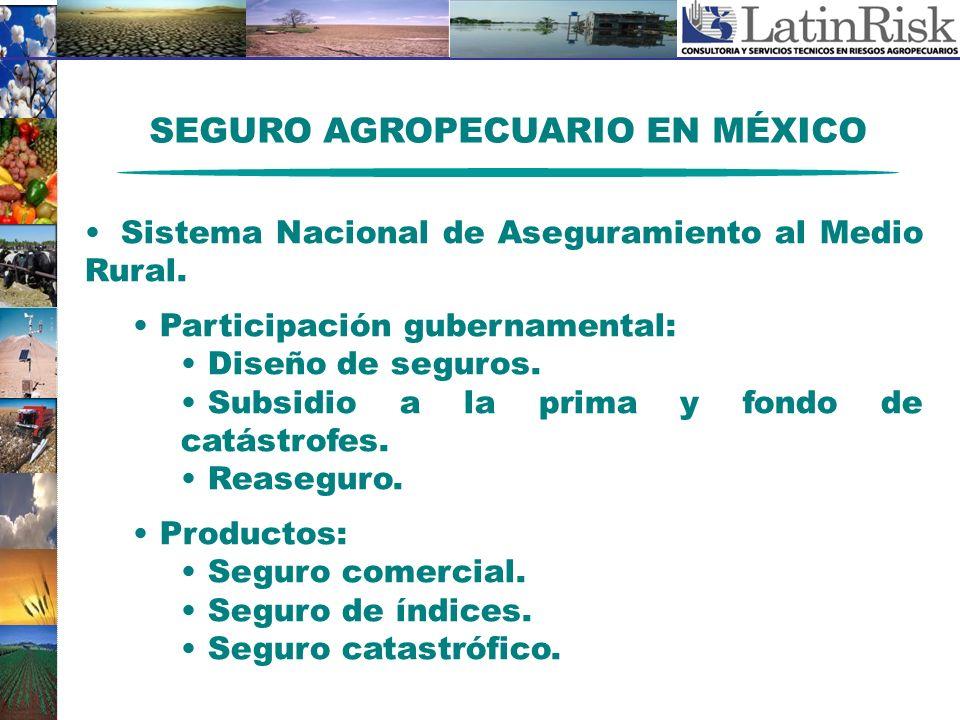 SEGURO AGROPECUARIO EN MÉXICO Sistema Nacional de Aseguramiento al Medio Rural. Participación gubernamental: Diseño de seguros. Subsidio a la prima y