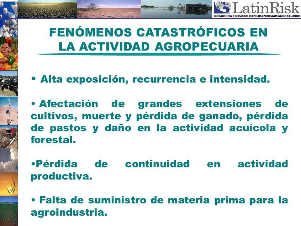 FENÓMENOS CATASTRÓFICOS EN LA ACTIVIDAD AGROPECUARIA Alta exposición, recurrencia e intensidad. Afectación de grandes extensiones de cultivos, muerte