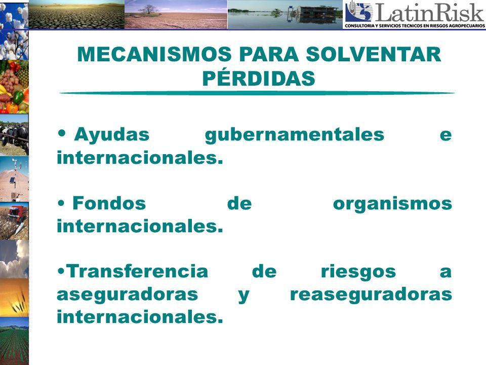 MECANISMOS PARA SOLVENTAR PÉRDIDAS Ayudas gubernamentales e internacionales. Fondos de organismos internacionales. Transferencia de riesgos a asegurad