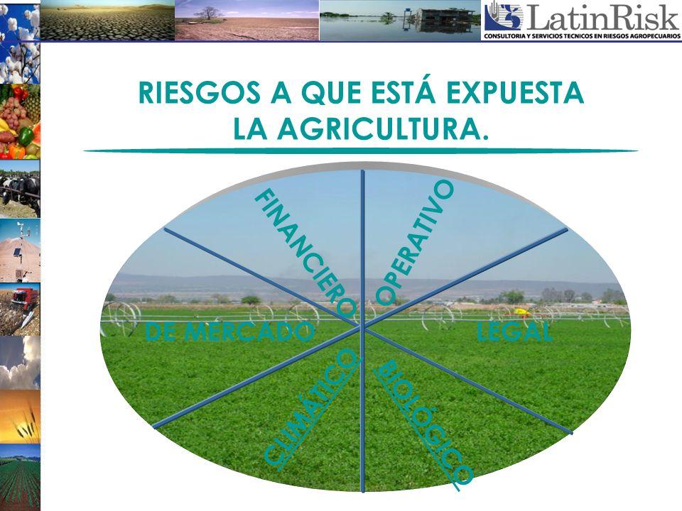 RIESGOS A QUE ESTÁ EXPUESTA LA AGRICULTURA. FINANCIERO OPERATIVO LEGALDE MERCADO CLIMÁTICO BIOLÓGICO