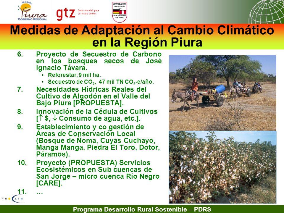 Programa Desarrollo Rural Sostenible – PDRS 6.Proyecto de Secuestro de Carbono en los bosques secos de José Ignacio Távara. Reforestar, 9 mil ha. Secu