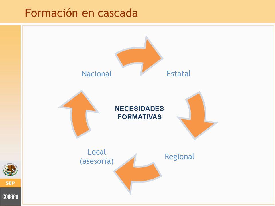 Formación en cascada Nacional Local (asesoría) Regional Estatal NECESIDADES FORMATIVAS
