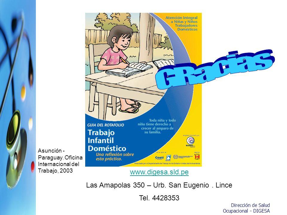 Dirección de Salud Ocupacional - DIGESA www.digesa.sld.pe Las Amapolas 350 – Urb. San Eugenio. Lince Tel. 4428353 Asunción - Paraguay, Oficina Interna