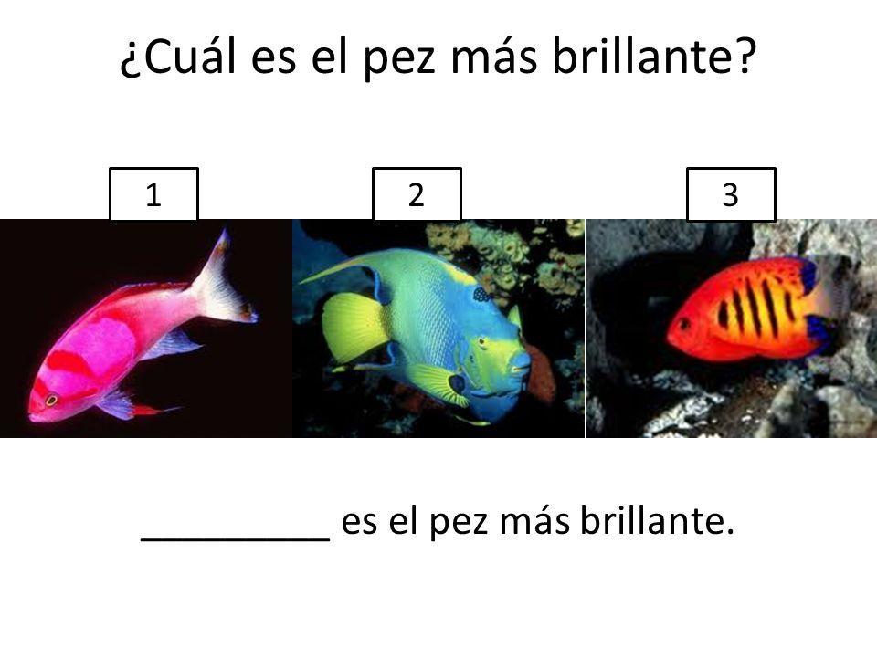 ¿Cuál es el pez más brillante? _________ es el pez más brillante. 123