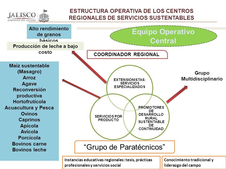 COORDINADOR REGIONAL Grupo de Paratécnicos Equipo Operativo Central Instancias educativas regionales: tesis, prácticas profesionales y servicios socia