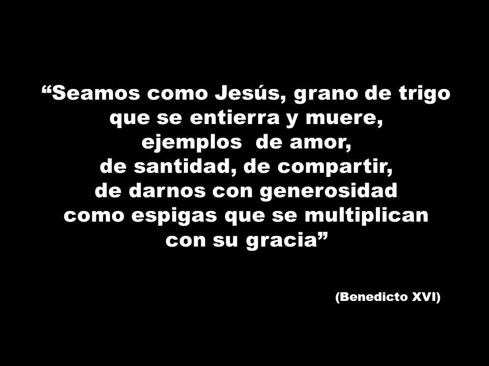 Seamos como Jesús, grano de trigo que se entierra y muere, ejemplos de amor, de santidad, de compartir, de darnos con generosidad como espigas que se
