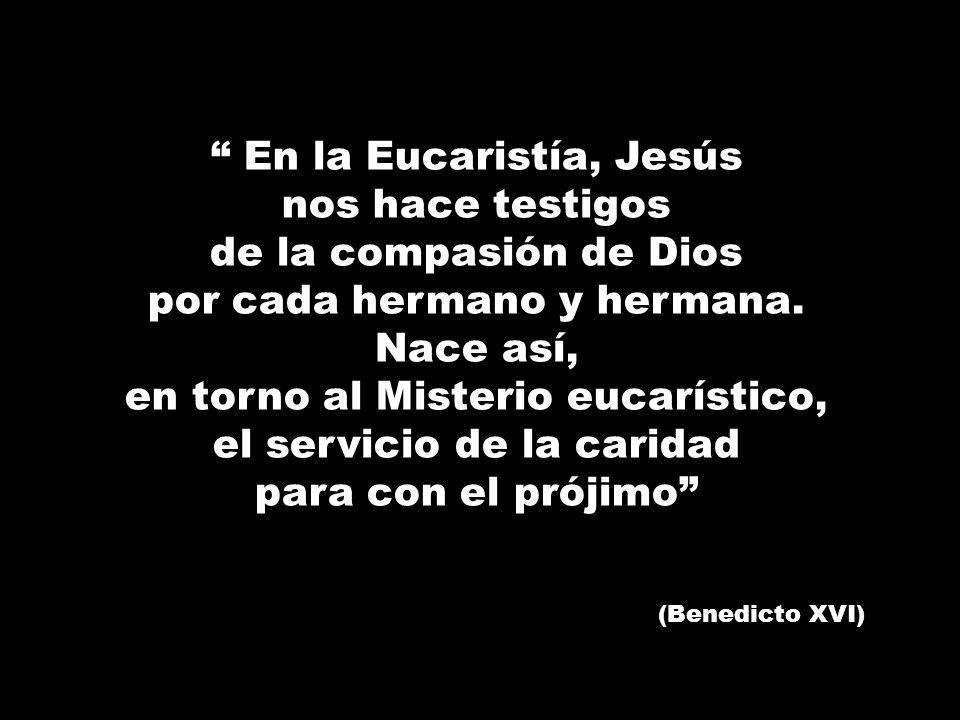 En la Eucaristía, Jesús nos hace testigos de la compasión de Dios por cada hermano y hermana. Nace así, en torno al Misterio eucarístico, el servicio