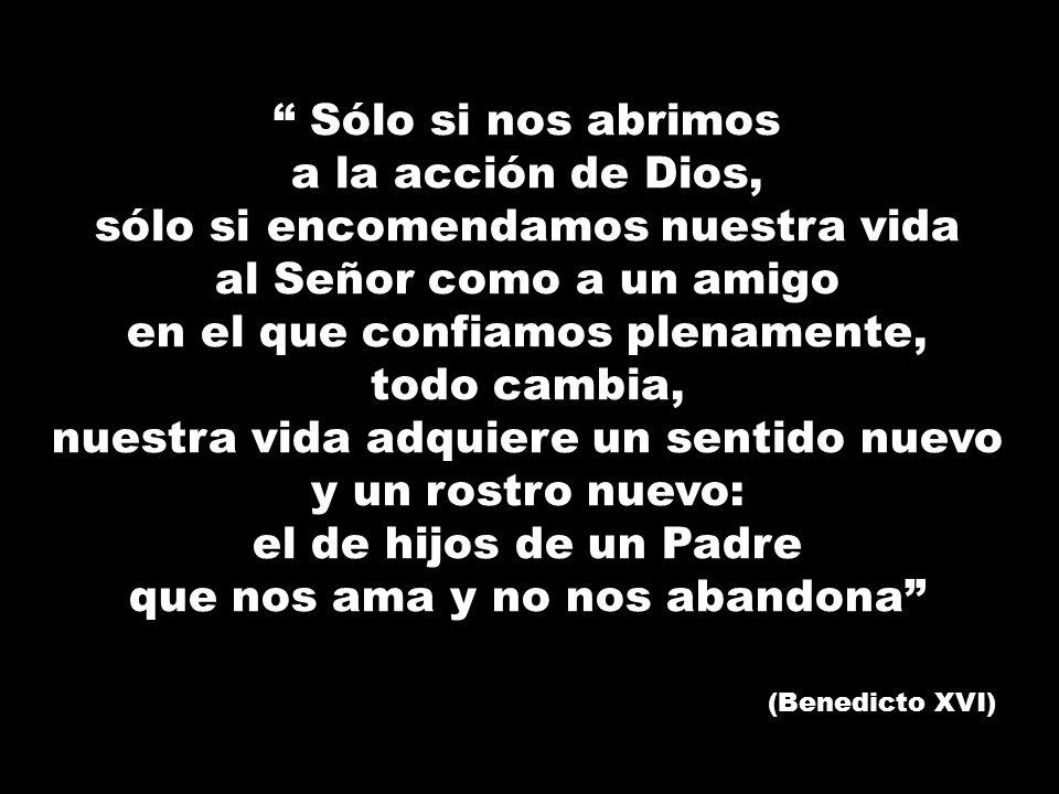 Sólo si nos abrimos a la acción de Dios, sólo si encomendamos nuestra vida al Señor como a un amigo en el que confiamos plenamente, todo cambia, nuest