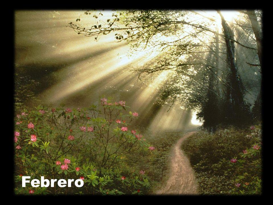 Madre, haz que, redescubriendo nuestra capacidad de ser contemplativos, reconozcamos siempre la presencia de Dios en nuestro camino.