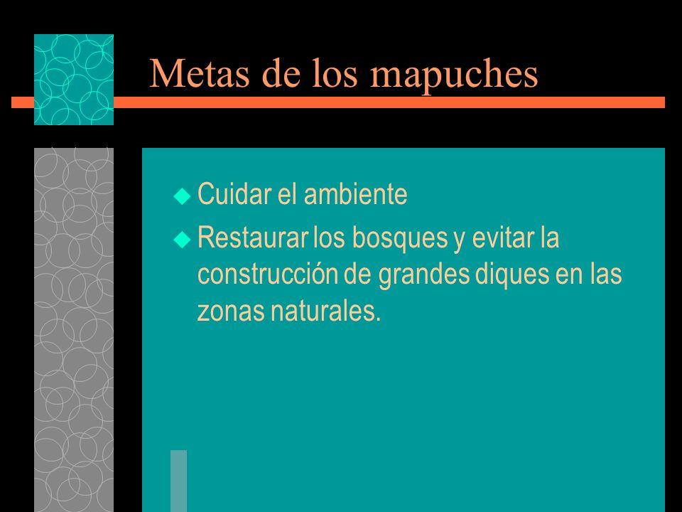 Metas de los mapuches Cuidar el ambiente Restaurar los bosques y evitar la construcción de grandes diques en las zonas naturales.