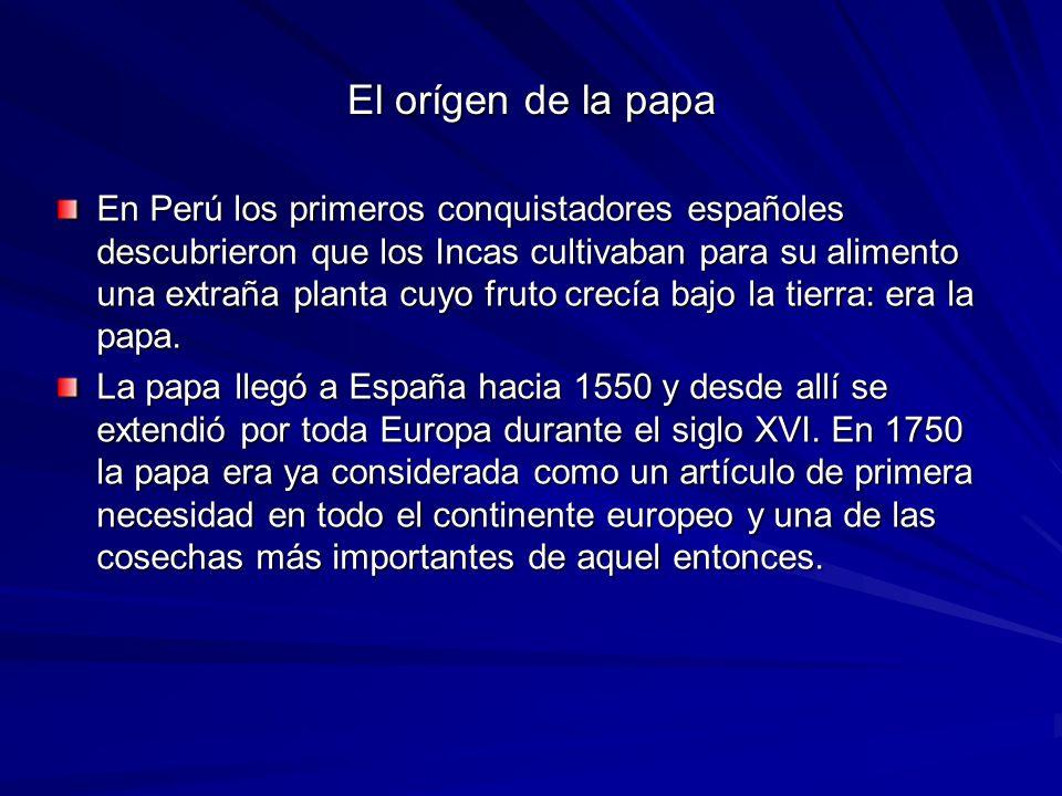 El orígen de la papa En Perú los primeros conquistadores españoles descubrieron que los Incas cultivaban para su alimento una extraña planta cuyo fruto crecía bajo la tierra: era la papa.