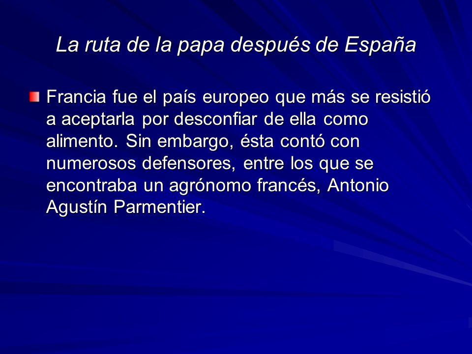 La ruta de la papa después de España Francia fue el país europeo que más se resistió a aceptarla por desconfiar de ella como alimento.