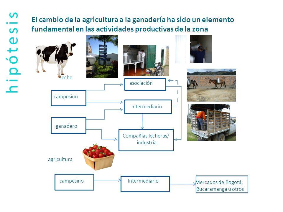 hipótesis El cambio de la agricultura a la ganadería ha sido un elemento fundamental en las actividades productivas de la zona agricultura campesino g