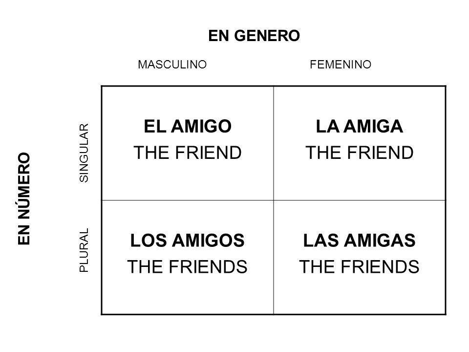 EL AMIGO THE FRIEND LA AMIGA THE FRIEND LOS AMIGOS THE FRIENDS LAS AMIGAS THE FRIENDS EN GENERO MASCULINOFEMENINO EN NÚMERO SINGULAR PLURAL