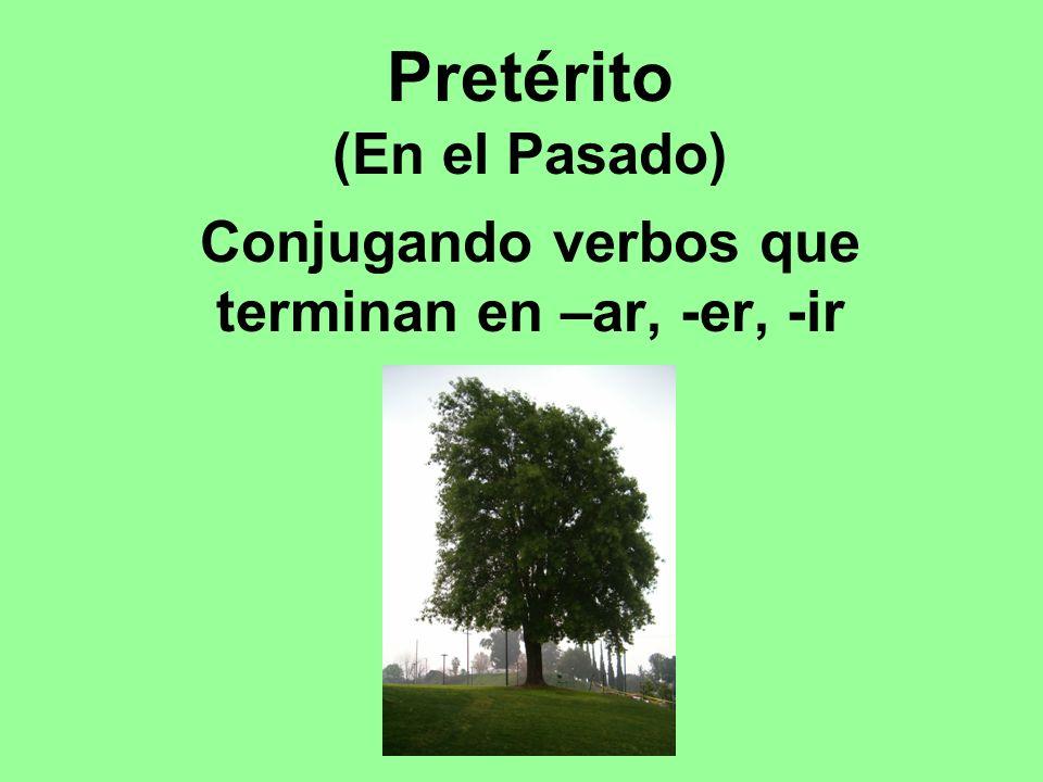 Pretérito (En el Pasado) Conjugando verbos que terminan en –ar, -er, -ir