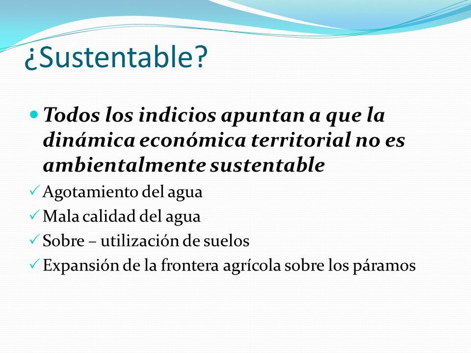¿Sustentable? Todos los indicios apuntan a que la dinámica económica territorial no es ambientalmente sustentable Agotamiento del agua Mala calidad de