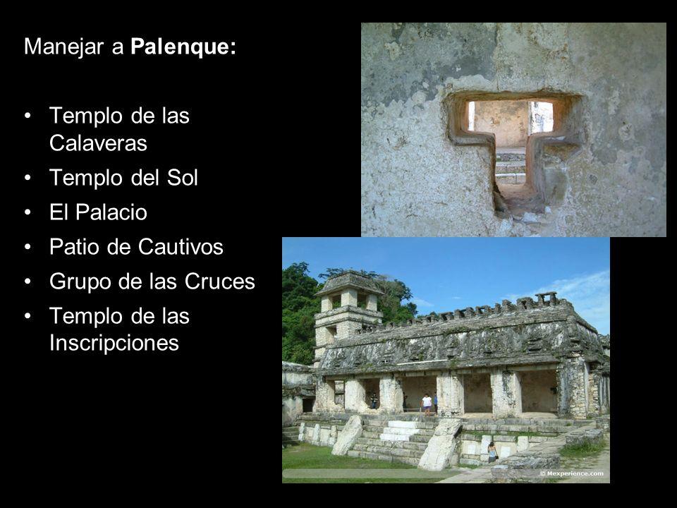 Manejar a Palenque: Templo de las Calaveras Templo del Sol El Palacio Patio de Cautivos Grupo de las Cruces Templo de las Inscripciones