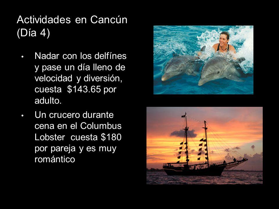 Actividades en Cancún (Día 4) Nadar con los delfínes y pase un día lleno de velocidad y diversión, cuesta $143.65 por adulto. Un crucero durante cena