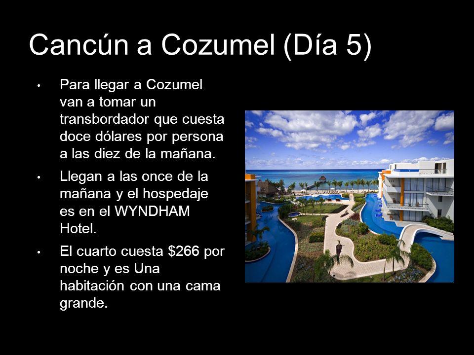 Cancún a Cozumel (Día 5) Para llegar a Cozumel van a tomar un transbordador que cuesta doce dólares por persona a las diez de la mañana. Llegan a las