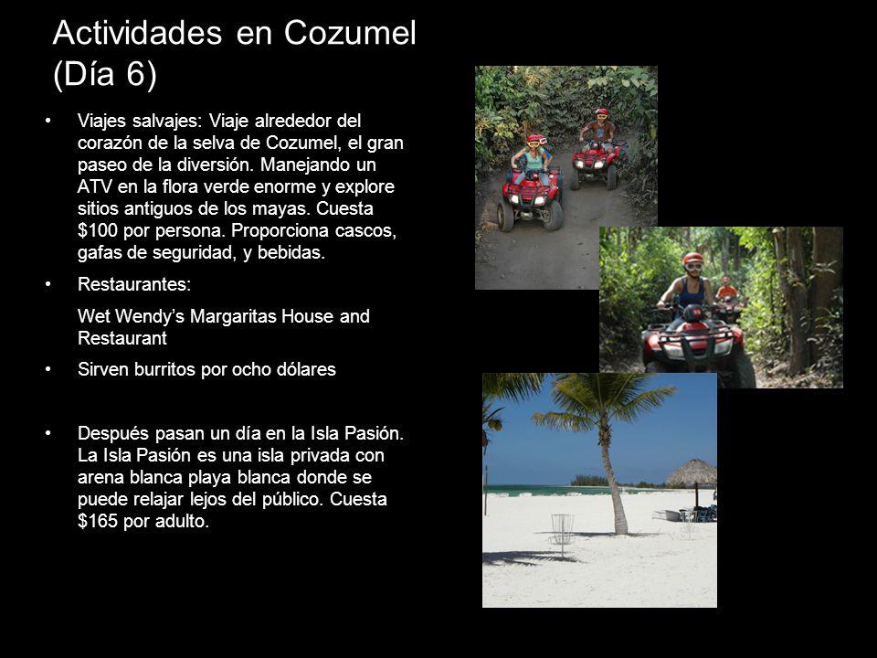 Actividades en Cozumel (Día 6) Viajes salvajes: Viaje alrededor del corazón de la selva de Cozumel, el gran paseo de la diversión. Manejando un ATV en