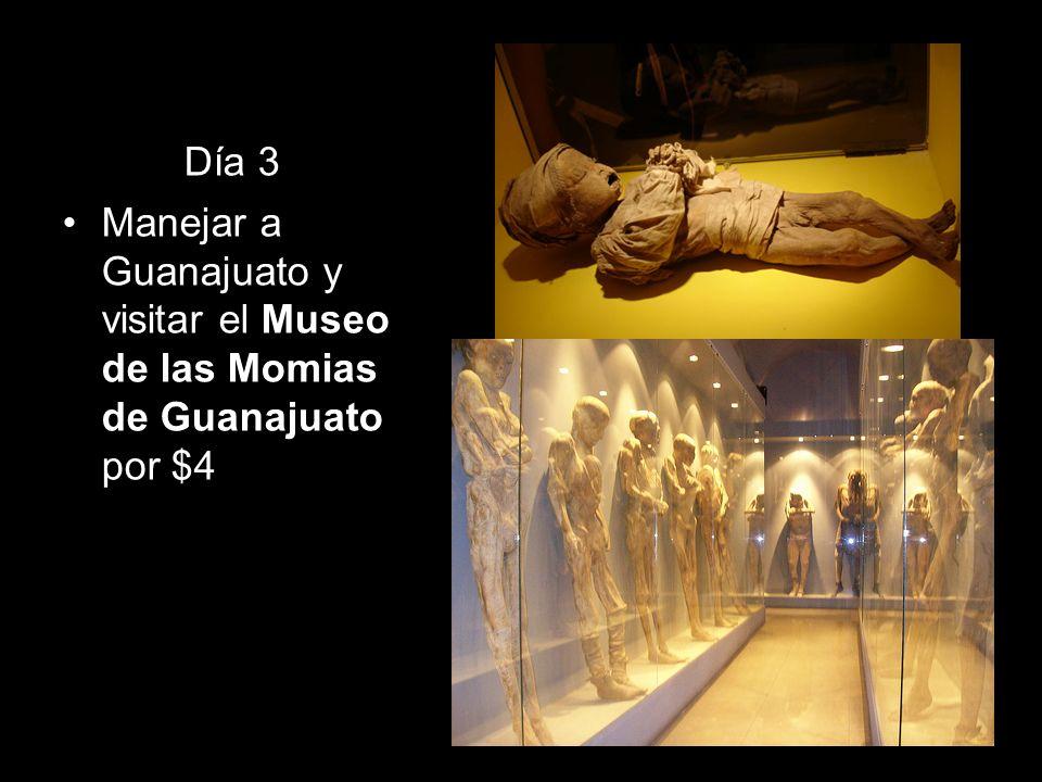 Día 3 Manejar a Guanajuato y visitar el Museo de las Momias de Guanajuato por $4