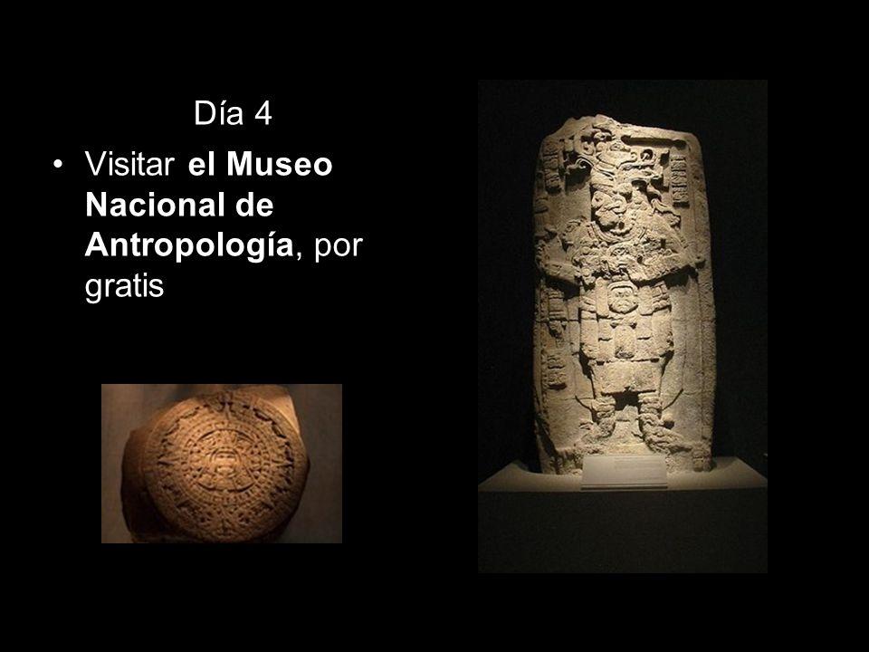 Día 4 Visitar el Museo Nacional de Antropología, por gratis