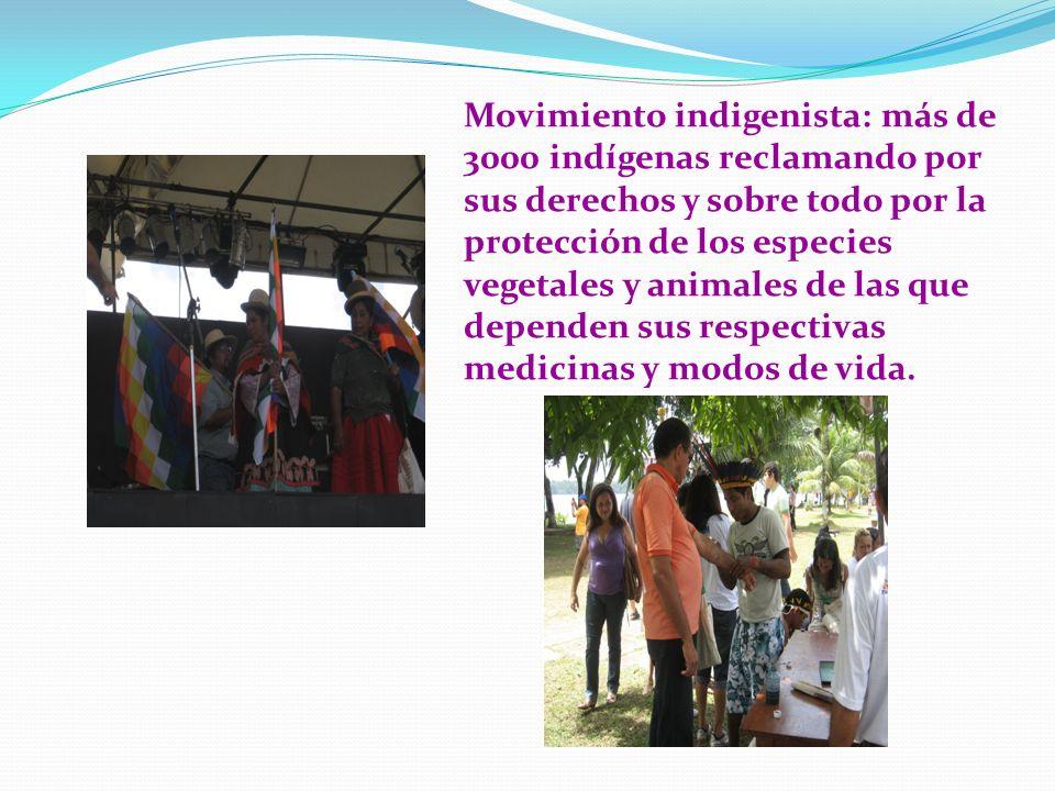 Movimiento indigenista: más de 3000 indígenas reclamando por sus derechos y sobre todo por la protección de los especies vegetales y animales de las que dependen sus respectivas medicinas y modos de vida.