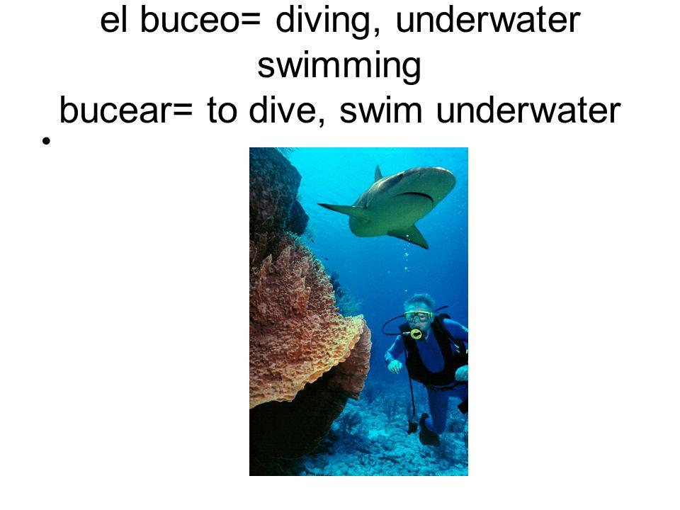 el buceo= diving, underwater swimming bucear= to dive, swim underwater