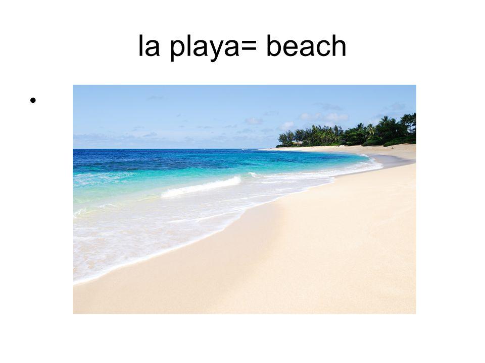 la playa= beach