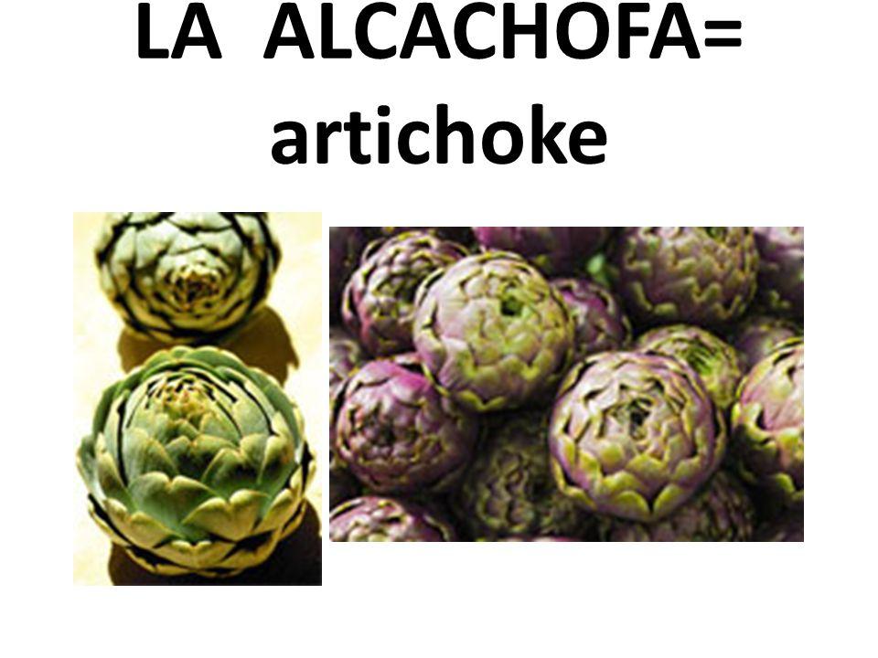 LA ALCACHOFA= artichoke