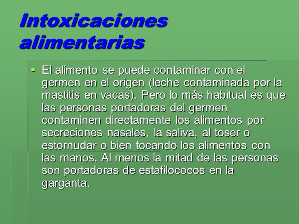Intoxicaciones alimentarias El alimento se puede contaminar con el germen en el origen (leche contaminada por la mastitis en vacas). Pero lo más habit