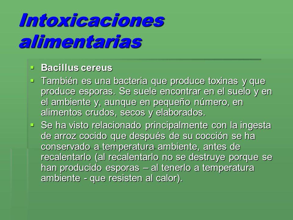 Intoxicaciones alimentarias Bacillus cereus Bacillus cereus También es una bacteria que produce toxinas y que produce esporas. Se suele encontrar en e