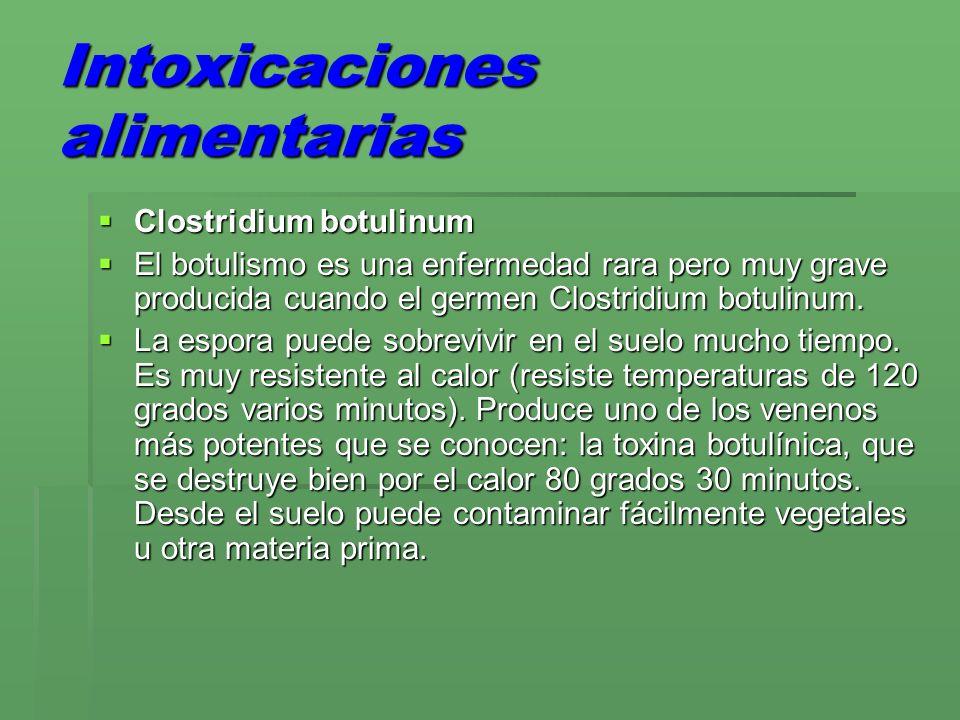 Intoxicaciones alimentarias Le gustan los ambientes con poco oxígeno para reproducirse (interior de una salchicha o de una lata).