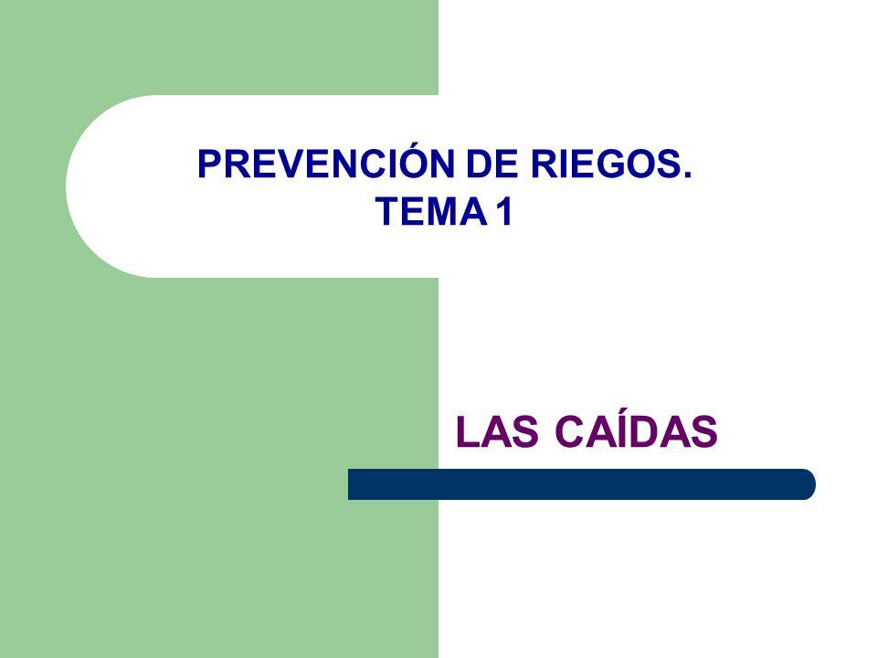 LAS CAÍDAS PREVENCIÓN DE RIEGOS. TEMA 1