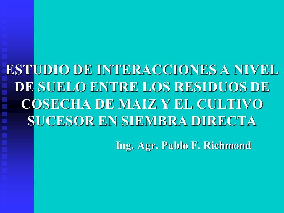 ESTUDIO DE INTERACCIONES A NIVEL DE SUELO ENTRE LOS RESIDUOS DE COSECHA DE MAIZ Y EL CULTIVO SUCESOR EN SIEMBRA DIRECTA Ing. Agr. Pablo F. Richmond In
