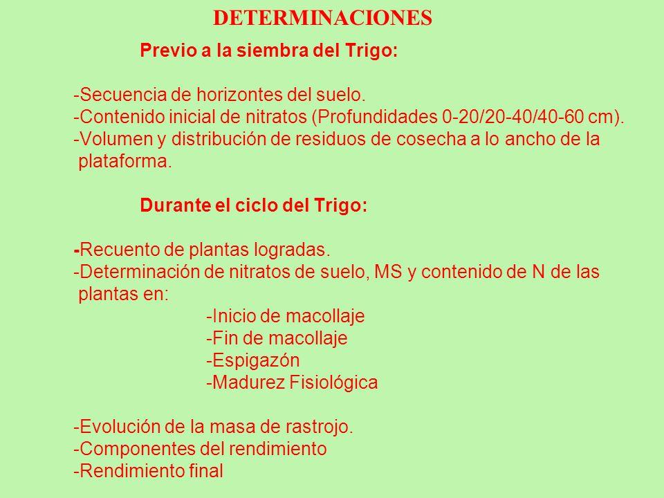 Previo a la siembra del Trigo: -Secuencia de horizontes del suelo. -Contenido inicial de nitratos (Profundidades 0-20/20-40/40-60 cm). -Volumen y dist