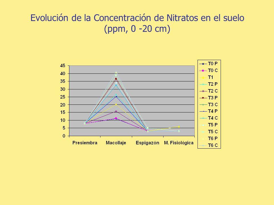 Rendimientos (kg/ha) Test. T s/r D1M1 D2M1 D1M2 D2M2 D2M1M2