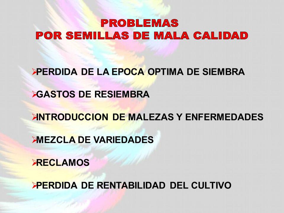 PERDIDA DE LA EPOCA OPTIMA DE SIEMBRA GASTOS DE RESIEMBRA INTRODUCCION DE MALEZAS Y ENFERMEDADES MEZCLA DE VARIEDADES RECLAMOS PERDIDA DE RENTABILIDAD DEL CULTIVO