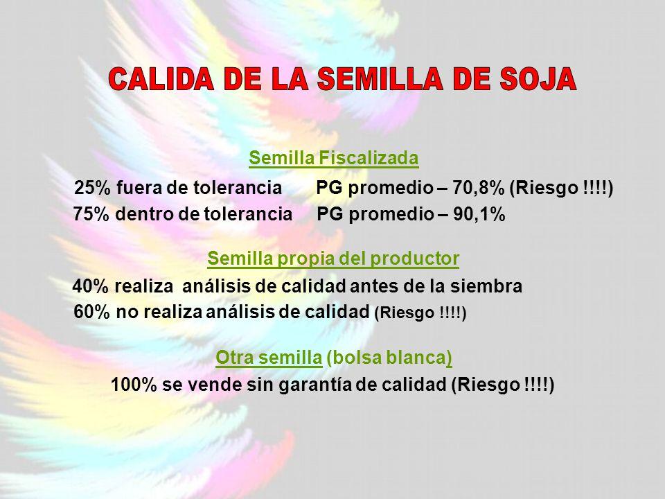 Semilla Fiscalizada 25% fuera de tolerancia PG promedio – 70,8% (Riesgo !!!!) 75% dentro de tolerancia PG promedio – 90,1% Semilla propia del productor 40% realiza análisis de calidad antes de la siembra 60% no realiza análisis de calidad (Riesgo !!!!) Otra semilla (bolsa blanca) 100% se vende sin garantía de calidad (Riesgo !!!!)