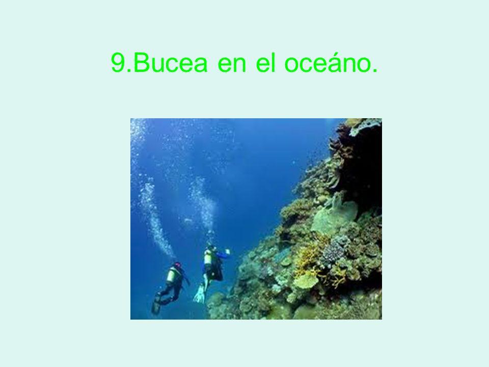 9.Bucea en el oceáno.