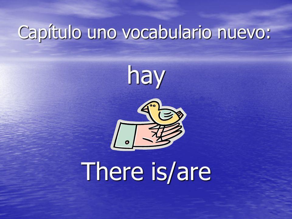 Capítulo uno vocabulario nuevo: saca (saquen) s/he takes/ take out…