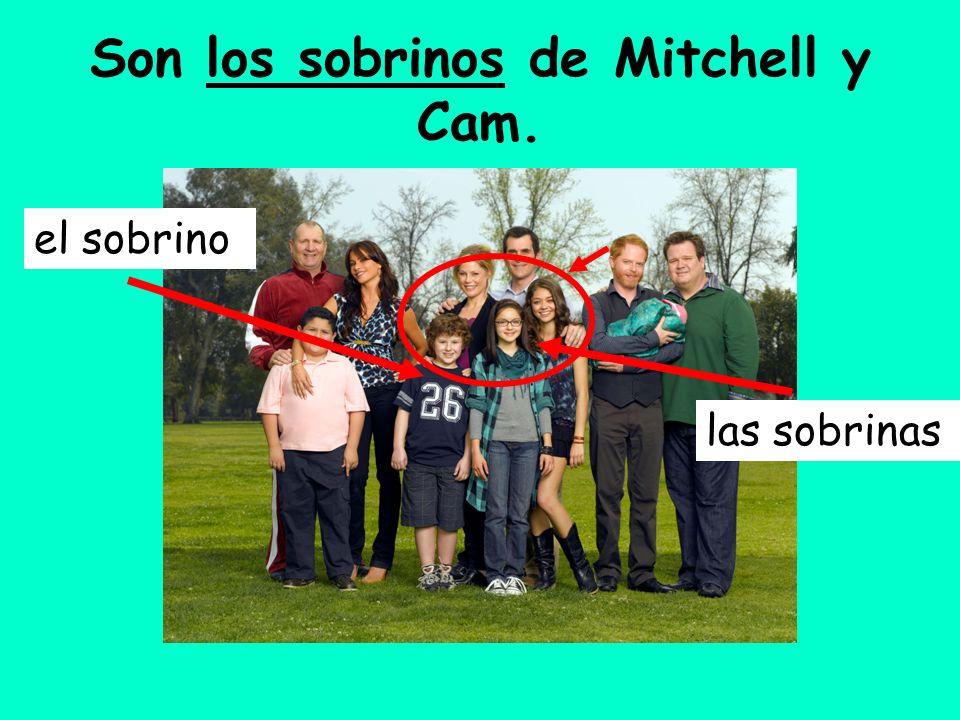 Son los sobrinos de Mitchell y Cam. el sobrino las sobrinas