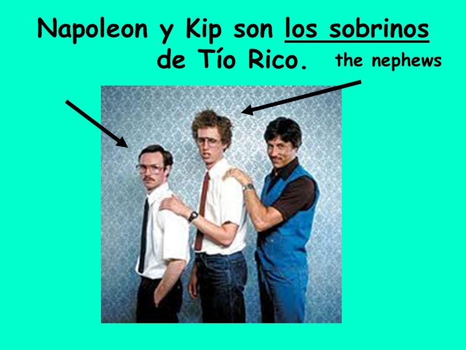 Napoleon y Kip son los sobrinos de Tío Rico. the nephews