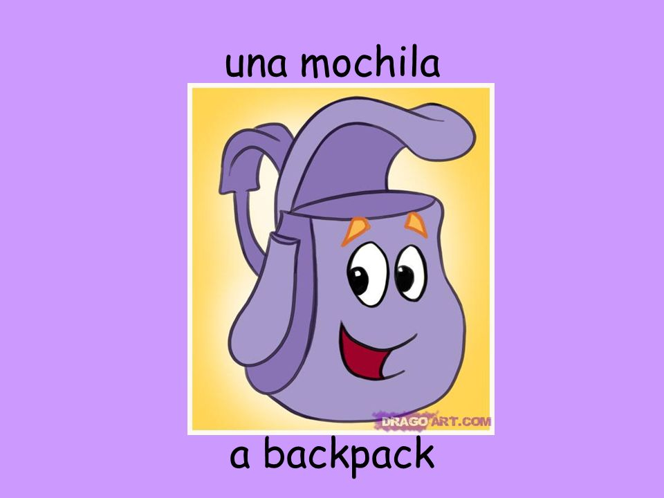 una mochila a backpack