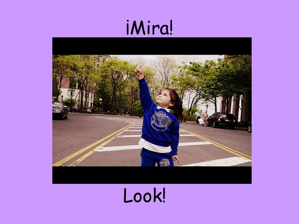¡Mira! Look!