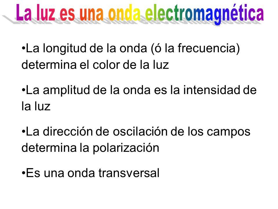 La longitud de la onda (ó la frecuencia) determina el color de la luz La amplitud de la onda es la intensidad de la luz La dirección de oscilación de los campos determina la polarización Es una onda transversal